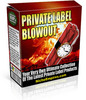 Thumbnail 5 Brand New Ebooks With PLR