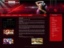 Thumbnail 3 Brand New WP Themes With PLR